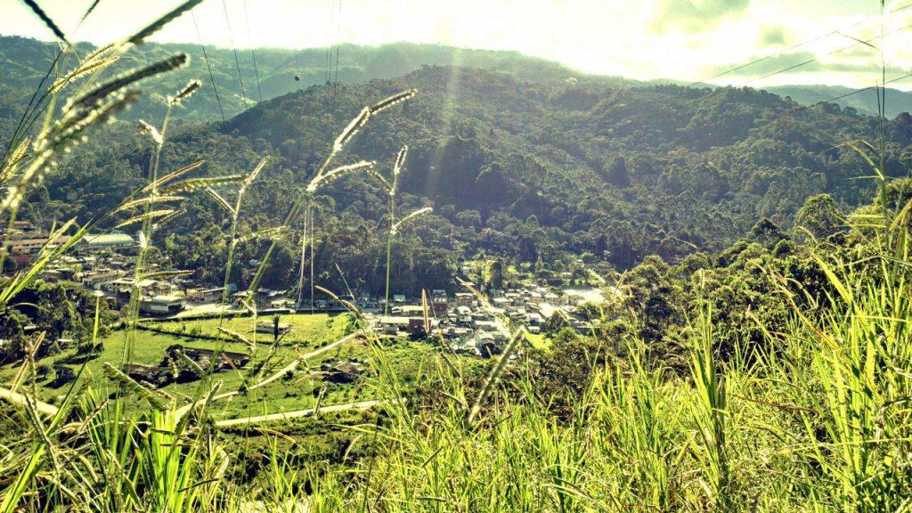 Villa Rica - Zona de producción de café peruano