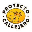 Proyecto Callejero-v2
